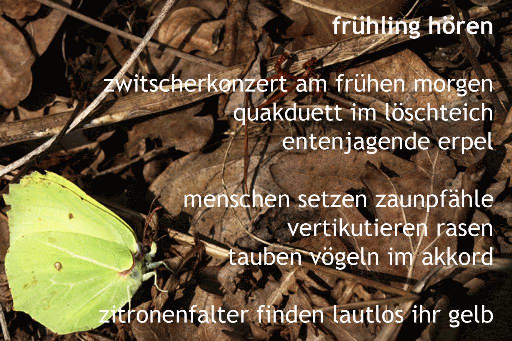 Frühling hören