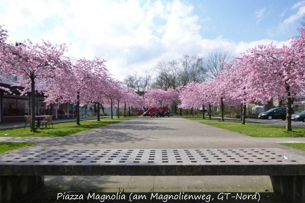 magnolienweg