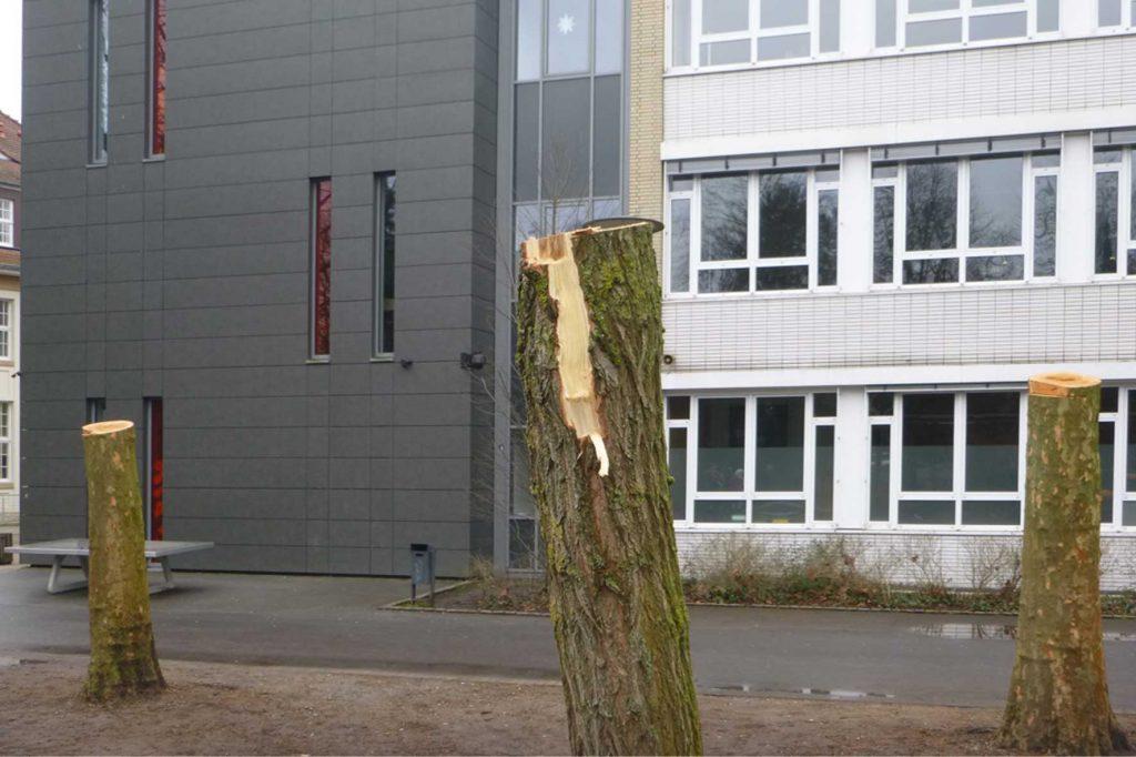 staedtisches gymnasium guetersloh